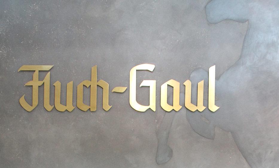 Fluch-Gaul